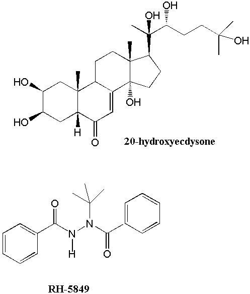 ecdysteroid agonist